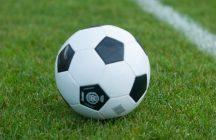 平成29年度 後期5年生大会 第26回富士宮ライオンズカップサッカー大会 (兼)静銀カップ富士宮地区予選